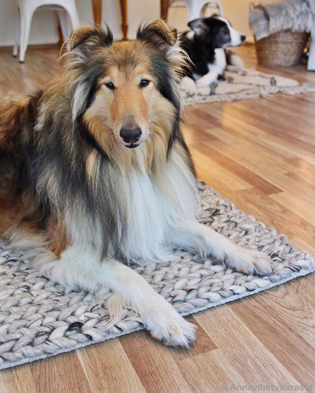 hand made black and brown dogs rugs
