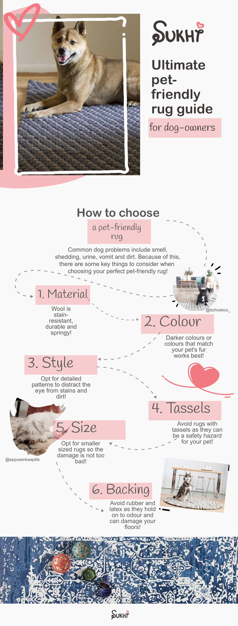 dog-friendly-rugs-best-tips
